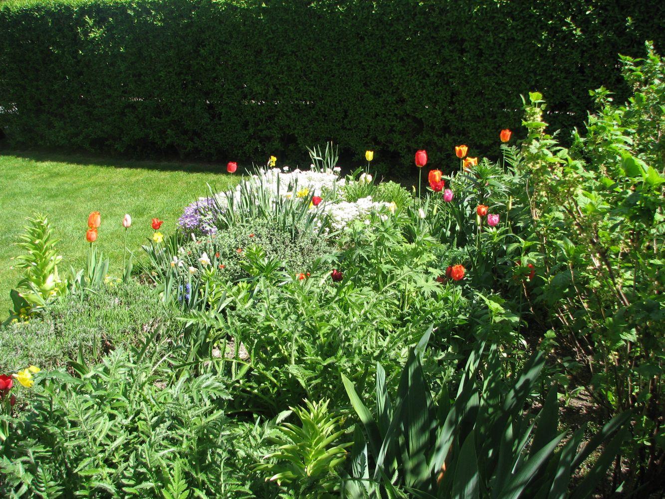Wiosenne ogrody – cieszą oczy i chronią zdrowie